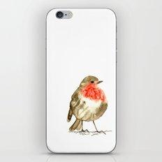 winterbird iPhone & iPod Skin