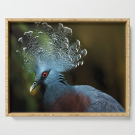 Victoria Crowned Pigeon Serving Tray
