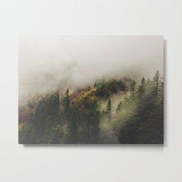 NW Fog Metal Print