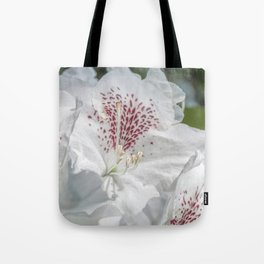 beautiful white flowers in the rhododendron park Tote Bag