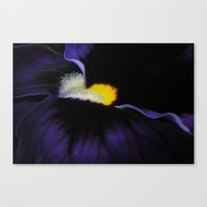 Deep Purple Viola Landscape Canvas Print