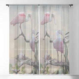 Spoonbills Of Florida Sheer Curtain