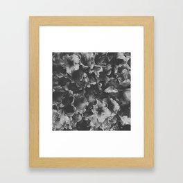 Dark Spring Framed Art Print