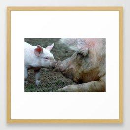 Piggy Love Framed Art Print