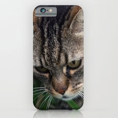 Outgoing cat 085 Slim Case iPhone 6s
