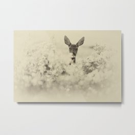 Roe Deer Metal Print