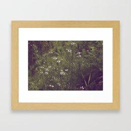 Sunlit Flowers Framed Art Print