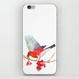 Bullfinch bird with ashberry iPhone Skin