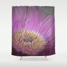 Soft pink Gerbera Shower Curtain