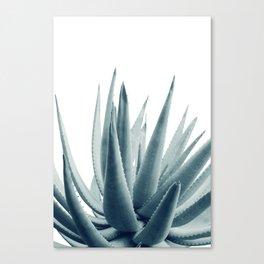 Agave Blue Vibe #1 #tropical #decor #art #society6 Canvas Print