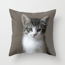 Jack - Kitten Portrait #2 (2016) Throw Pillow