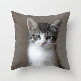 Jack - Kitten Portrait #2 (2016) Throw Pillow