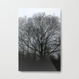 The trees of the mind are black. ' Metal Print