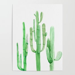 Three Amigos Cacti Green Poster