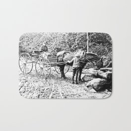 Vintage Adirondacks: The Roadside Watering Trough Bath Mat