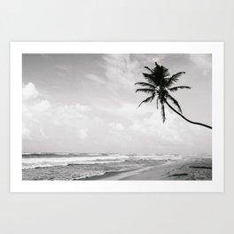 Swaying Palm Art Print