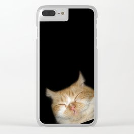 Funny Sleeping Cat Clear iPhone Case