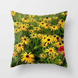 Yellow Flowers Black Eyed Susan and Red Throw Pillow