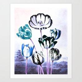 Blue Teal Tulips : Temple of Flora Art Print