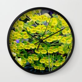 A Genetic Explosion Wall Clock