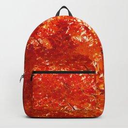 Blaze Backpack