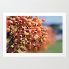 Berry Bright Art Print