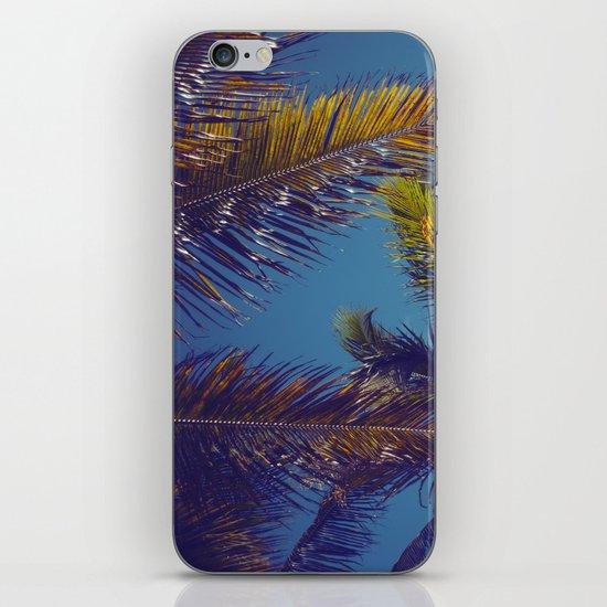 Palm Sky iPhone & iPod Skin