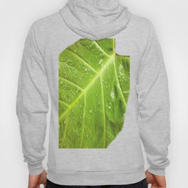 Alocasia After the Rain Hoody