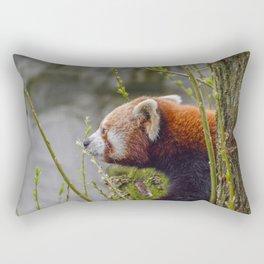 Close Up Of A Red Panda Rectangular Pillow