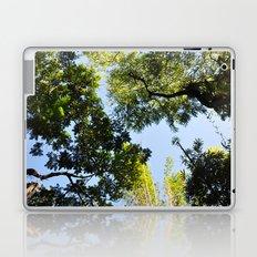 Canopy I Laptop & iPad Skin