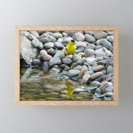 Golden Reflections Framed Mini Art Print