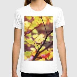 autumn leaf 3 T-shirt