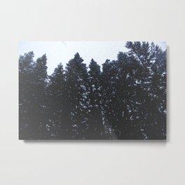 Cold Storm Metal Print