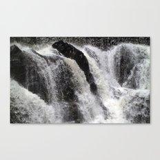 Rapids Canvas Print