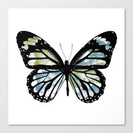 Watercolor Wings Canvas Print