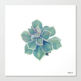 california rock rose succulent Canvas Print