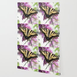 Western Tiger Swallowtail on the Neighbor's Butterfly Bush Wallpaper