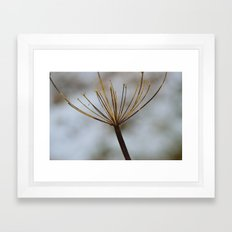 Cow Parsley In the Snow Framed Art Print