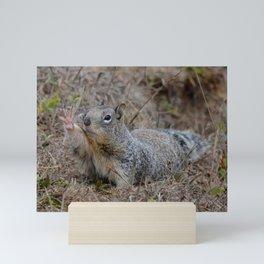 squirrel salute Mini Art Print