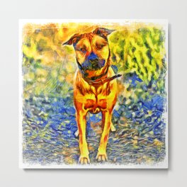 Pet Dog Pictures, Large and Small Breeds Metal Print