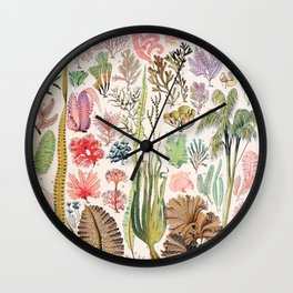 Adolphe Millot - Algues - French vintage poster Wall Clock