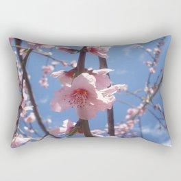 Cielo de La Mancha de Don Quijote Rectangular Pillow