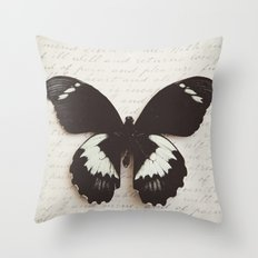 Papilio Aegus Butterfly Throw Pillow