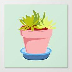 Succulent #2 Canvas Print