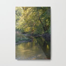 Where Canoes and Raccoons Go Series, No. 6 Metal Print
