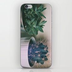 prickly  iPhone & iPod Skin