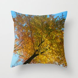 In #autumn, through the #forest Throw Pillow