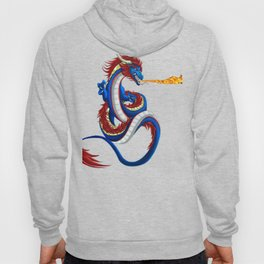 Dragon Fire RPG Tabletop Gaming Dungeon graphic Hoody
