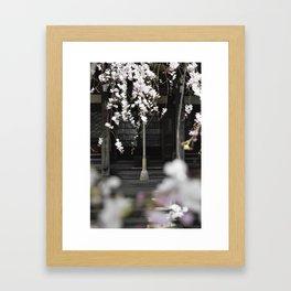 Prayer Bell Under The Cherry Blossoms Framed Art Print