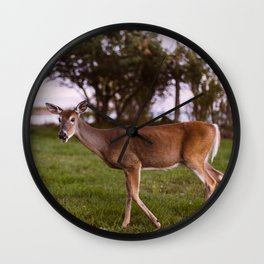 A Deer In Marquette Wall Clock